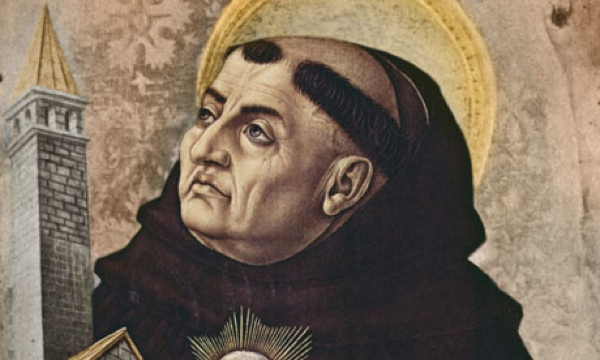 St. Thomas on the intellect